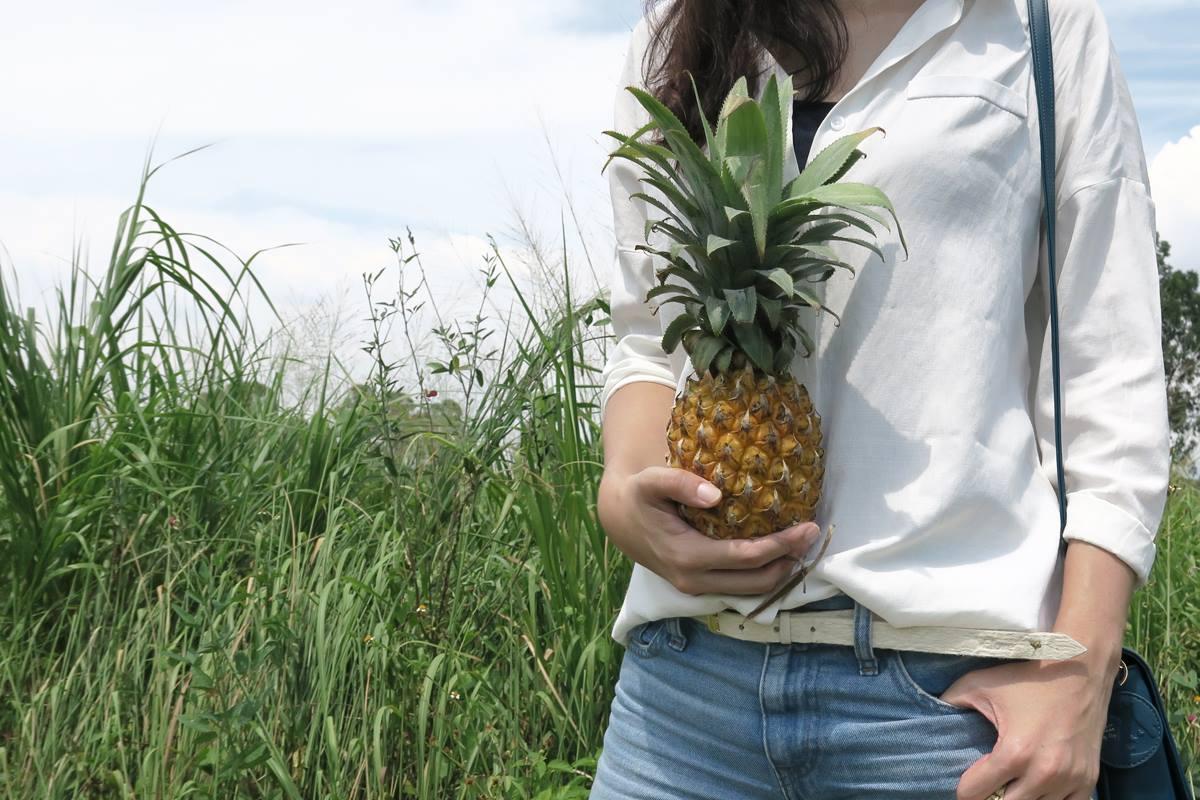 cintura in pelle d'ananas pinatex