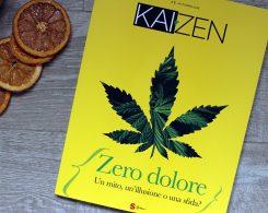 rivista kaizen edizioni sonda
